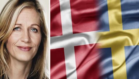 """""""Amikor Svédország elbukik és arab ország lesz, már nem lesz bennünk túl sok közös"""" – dán politikus"""