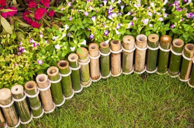 Pembatas tanaman dari bambu