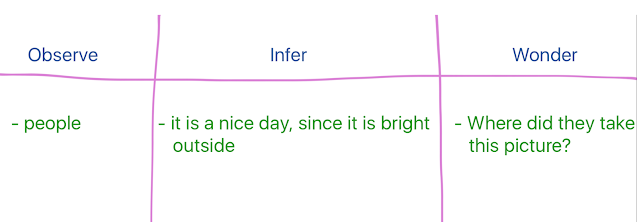 observe, infer and wonder chart