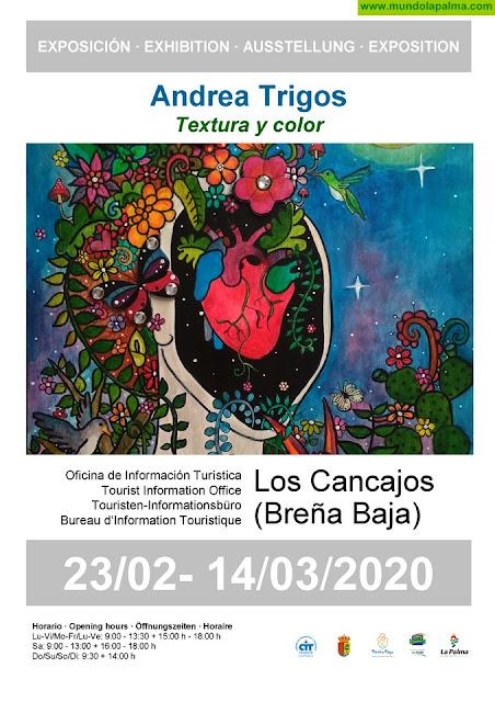 """LOS CANCAJOS: """"Textura y Color"""" de Andrea Trigos"""