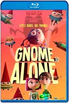 Gnomos al Ataque (2017) HD 720p Latino