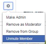 Unmute Member