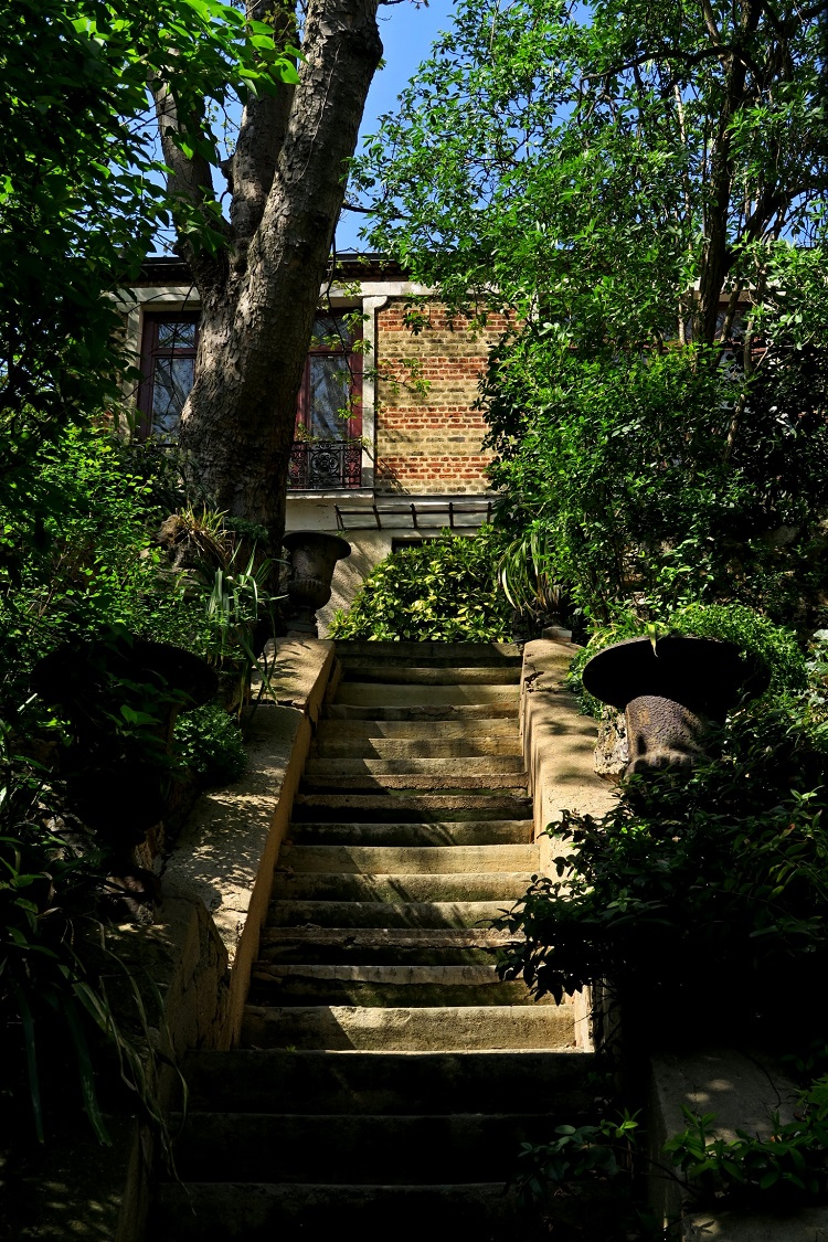Maison, arbres et végétation