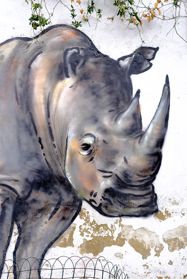 A street artwork of Sudan the last Northern White Rhino painted in a London school by artist James Straffon