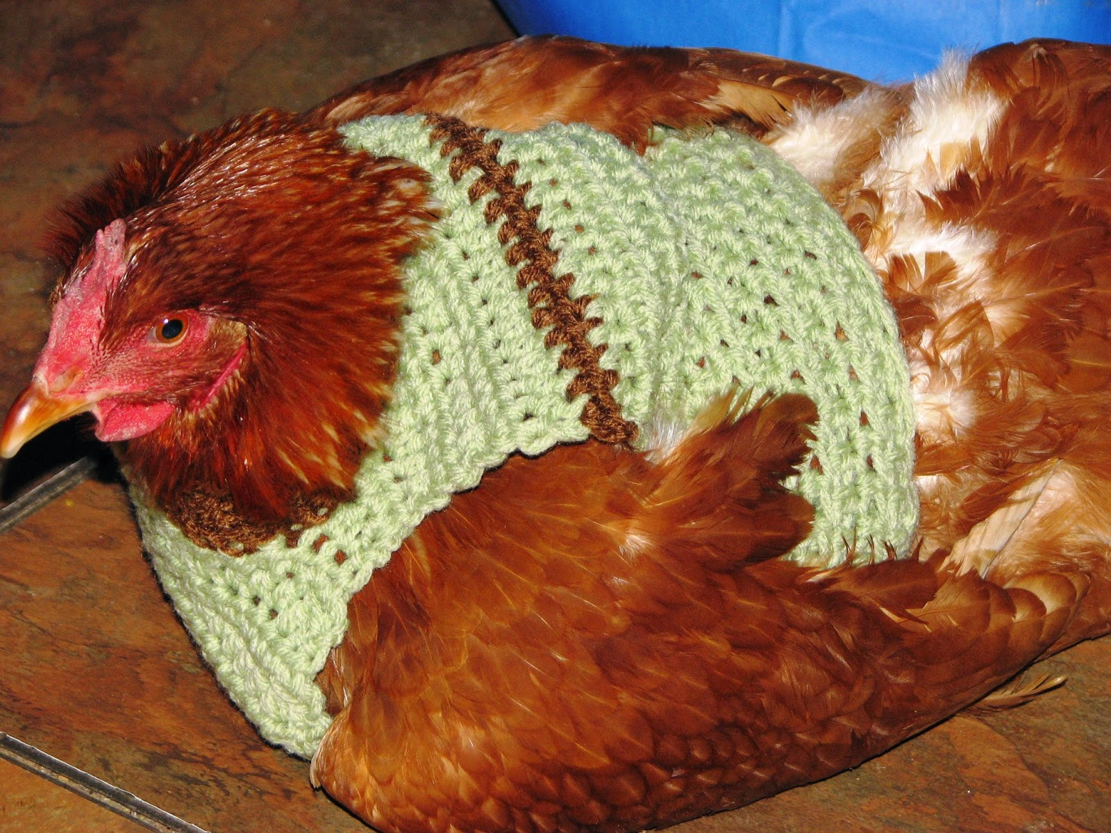 66f10671396b3 Creative Crochet by Becky  Crochet Chicken Sweaters Pattern and ...