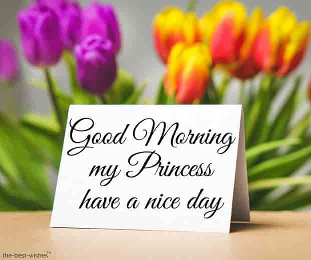 good morning my princess have a nice day