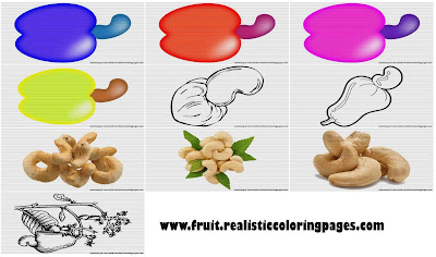 10 free marvelous cashew clipart