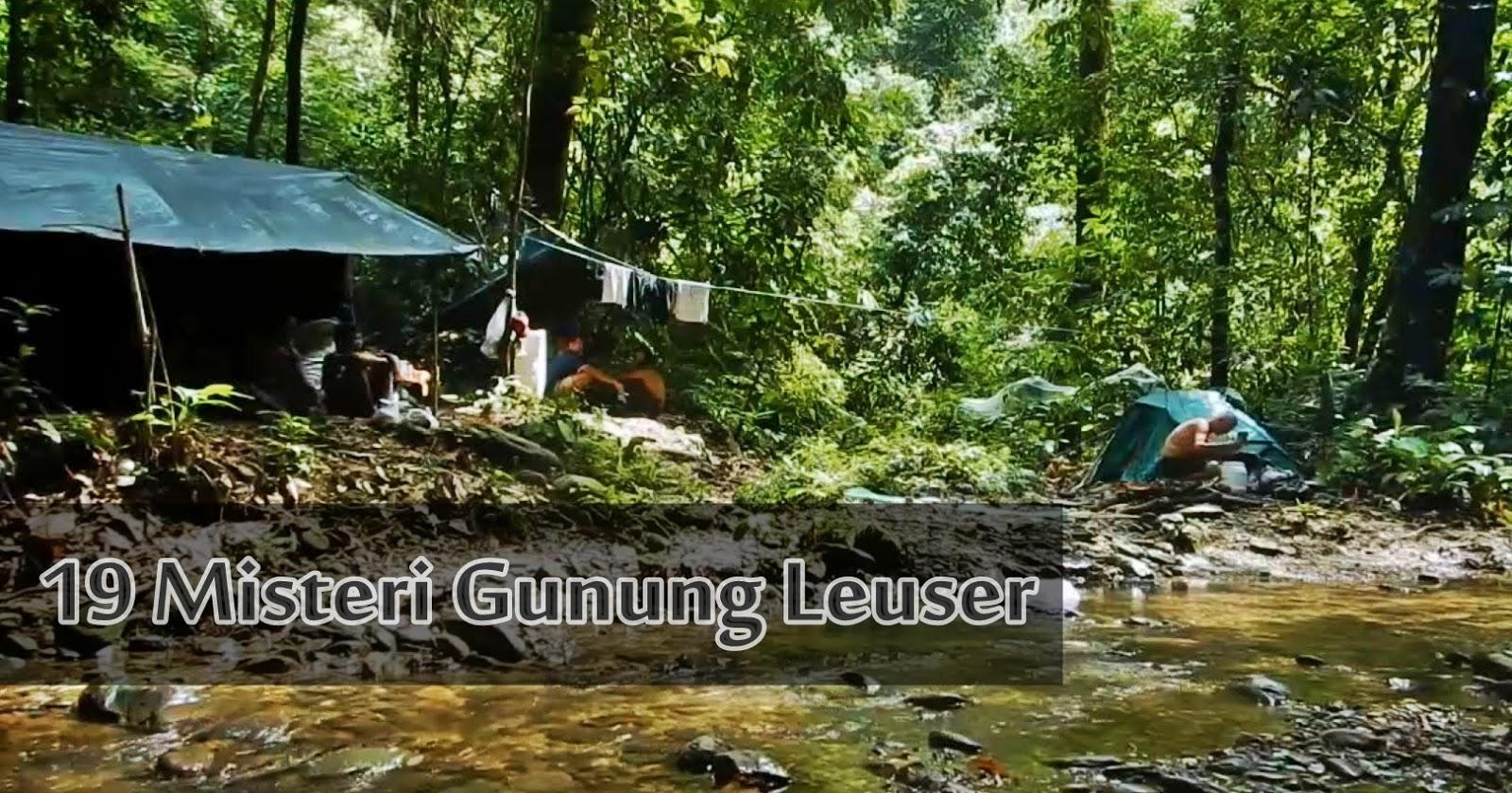 19 Fakta dan Misteri Gunung Leuser di Sumatera | Basecamp Para Pendaki Basecamp Para Pendaki1600 × 839Search by image 19 Fakta dan Misteri Gunung Leuser di Sumatera