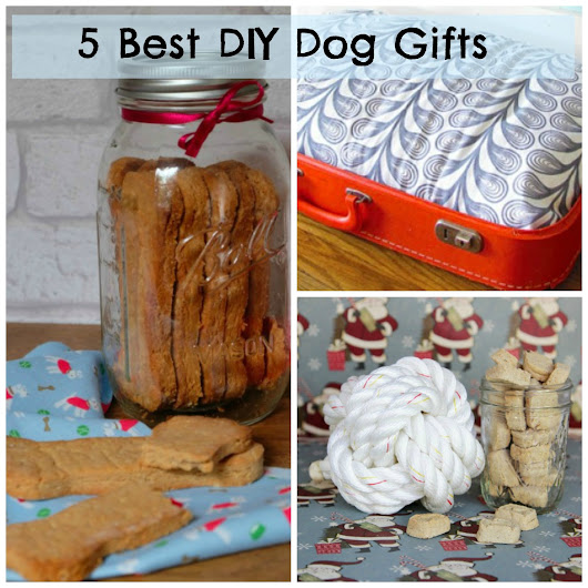 DIY Gifts for your Dog