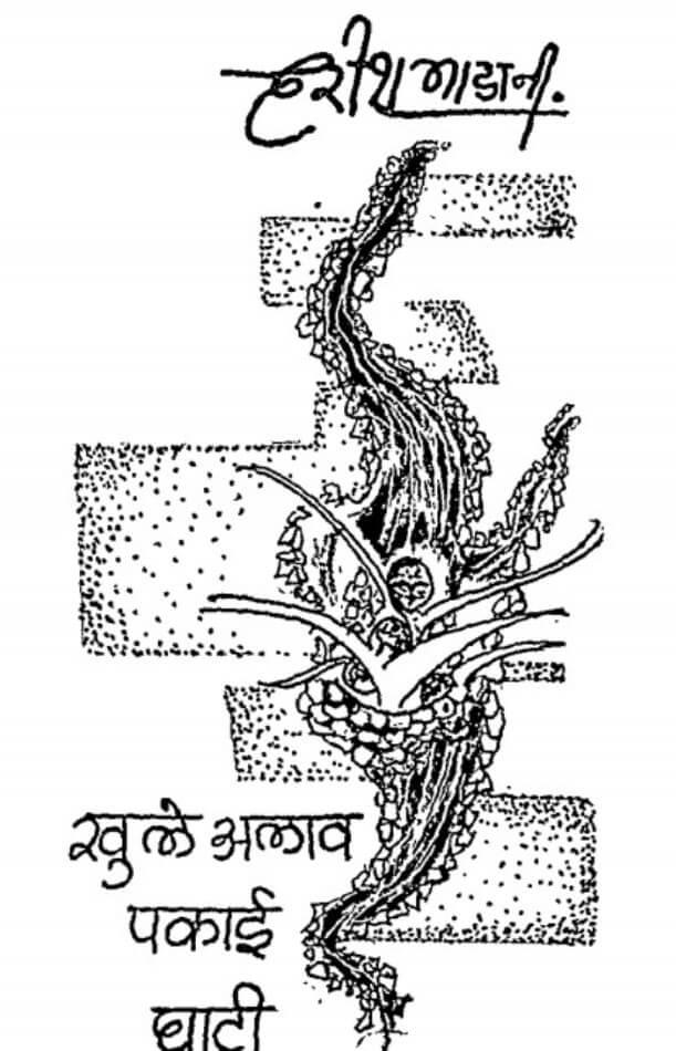 khule-alaav-pakai-ghati-harish-bhadani-खुले-अलाव-पकाई-घाटी-हरीश-भदानी