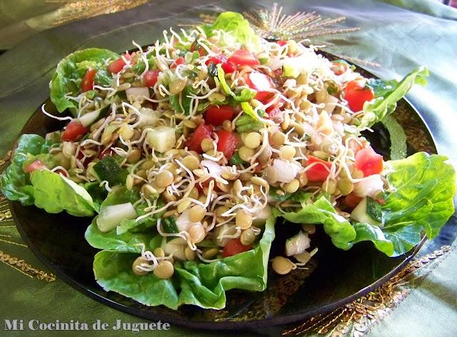 ensalada india de lentejas germinadas