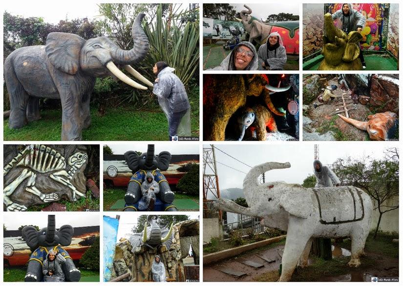 O que fazer em Campos do Jordão - Morro do Elefante