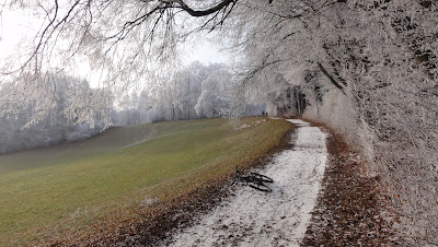 Weg zwischen Höngen und Balsthal
