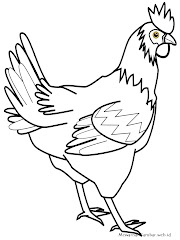 53+ Gambar Ayam Animasi Hitam Putih Terbaik