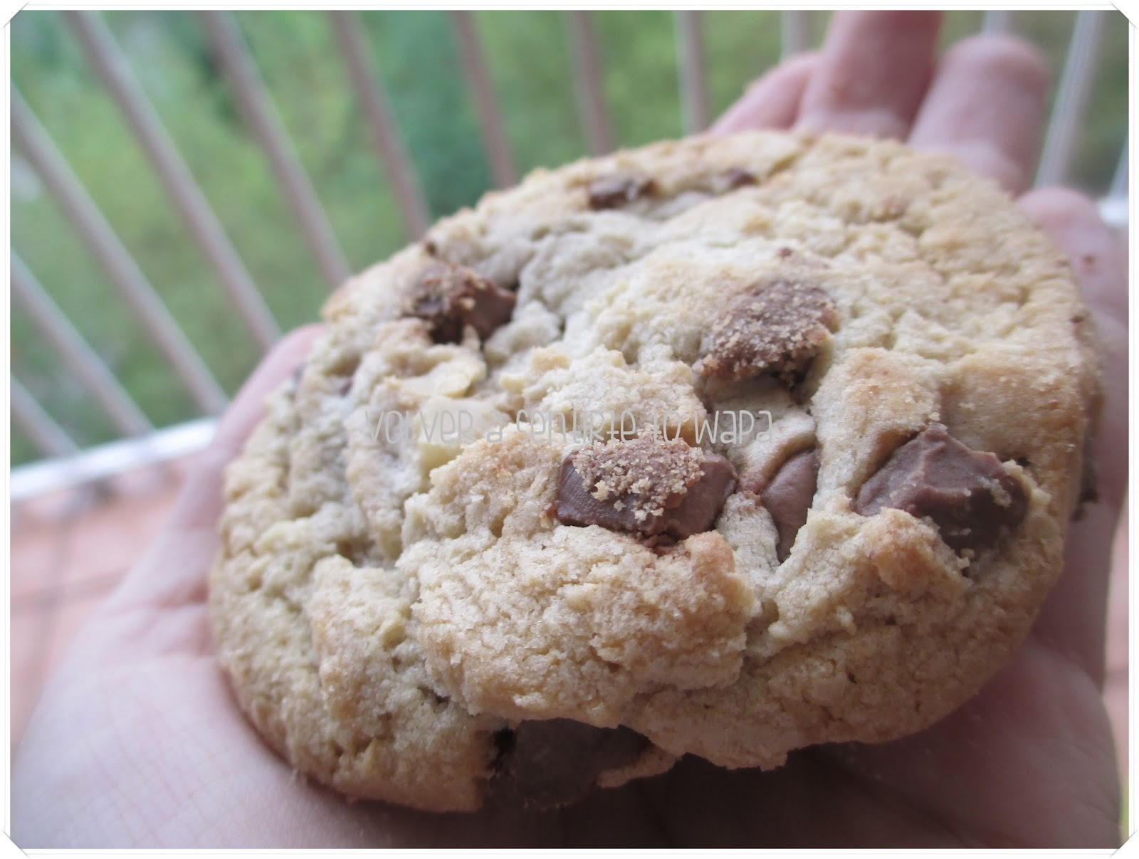 degustabox 'Vuelta al Cole' - Agosto 2014 - Cookies Pepperidge Farm