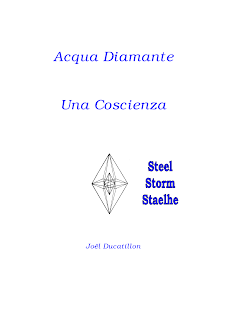 Acqua diamante, una coscienza - Joel Ducatillon