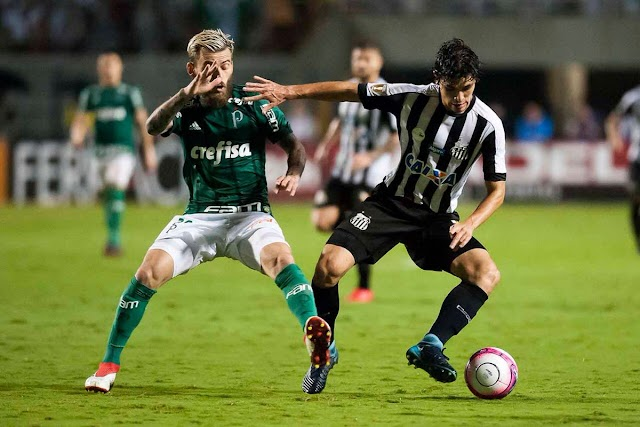 Santos vence, Palmeiras se classifica