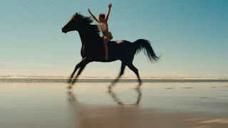 black stallion movie melissa mathison