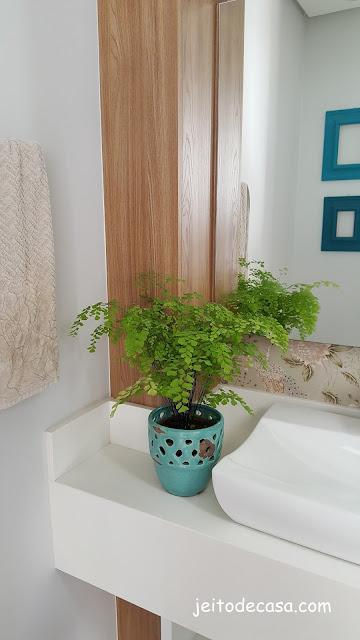 dica-de-plantas-para-lavabo