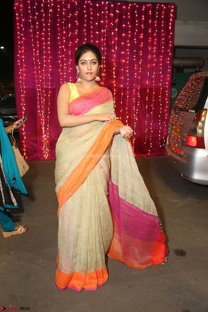 Anu Emanuel Looks Super Cute in Saree ~  Exclusive Pics 001.JPG