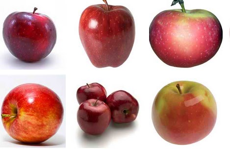 Apple Recipes for Family