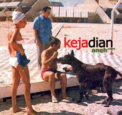 Persahabatan Raja Dengan Anjing Persahabatan Raja Muslim Dengan Anjing