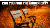 It contains picture puzzles in which one has to find the given hidden animals