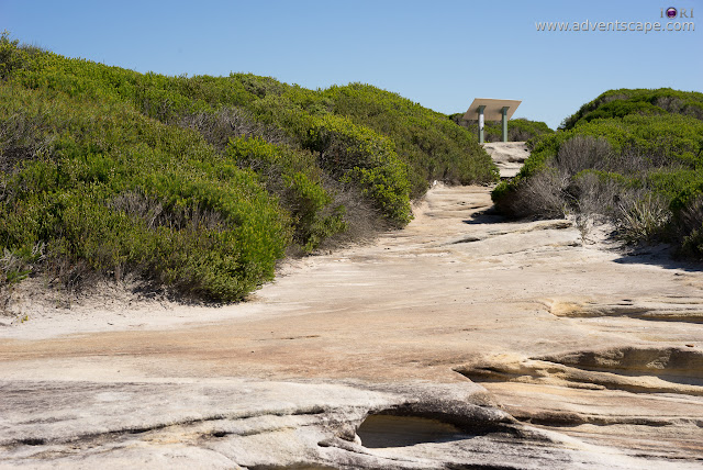 adventscape, attraction, Australia, Bundeena, coastal walk, iori, landscape, limestone, nature, New South Wales, NSW, Philip Avellana, places to visit, Royal National Park, tourism, Wedding Cake Rock, map, bushes, The Balconies