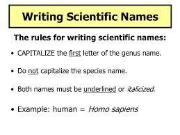 scientific names of plants