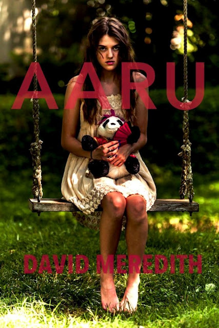 aaru, david-meredith, book