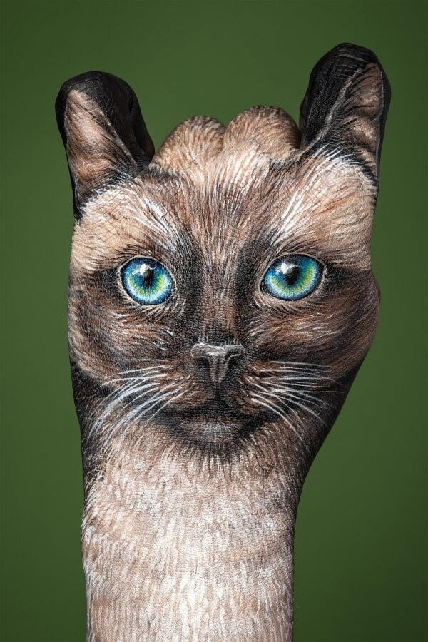 08-Siamese-Cat-Guido-Daniele-Body-Painting-www-designstack-co