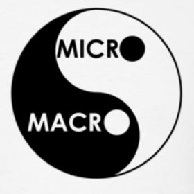 Micro et macro économiePhilippe Peret