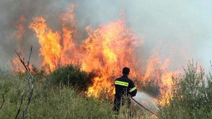 Αλεξανδρούπολη: Σύλληψη ατόμου για αγροτοδασική πυρκαγιά από υπαίθρια ψησταριά