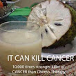 Graviola (soursop) Is A Cure For CANCER ~ DOCTOR HEALTH SAYS