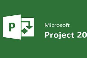 Microsoft Project Professional 2016 [32 y 64 bits]