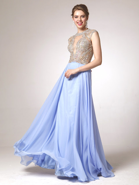 Long Embellished Dress: