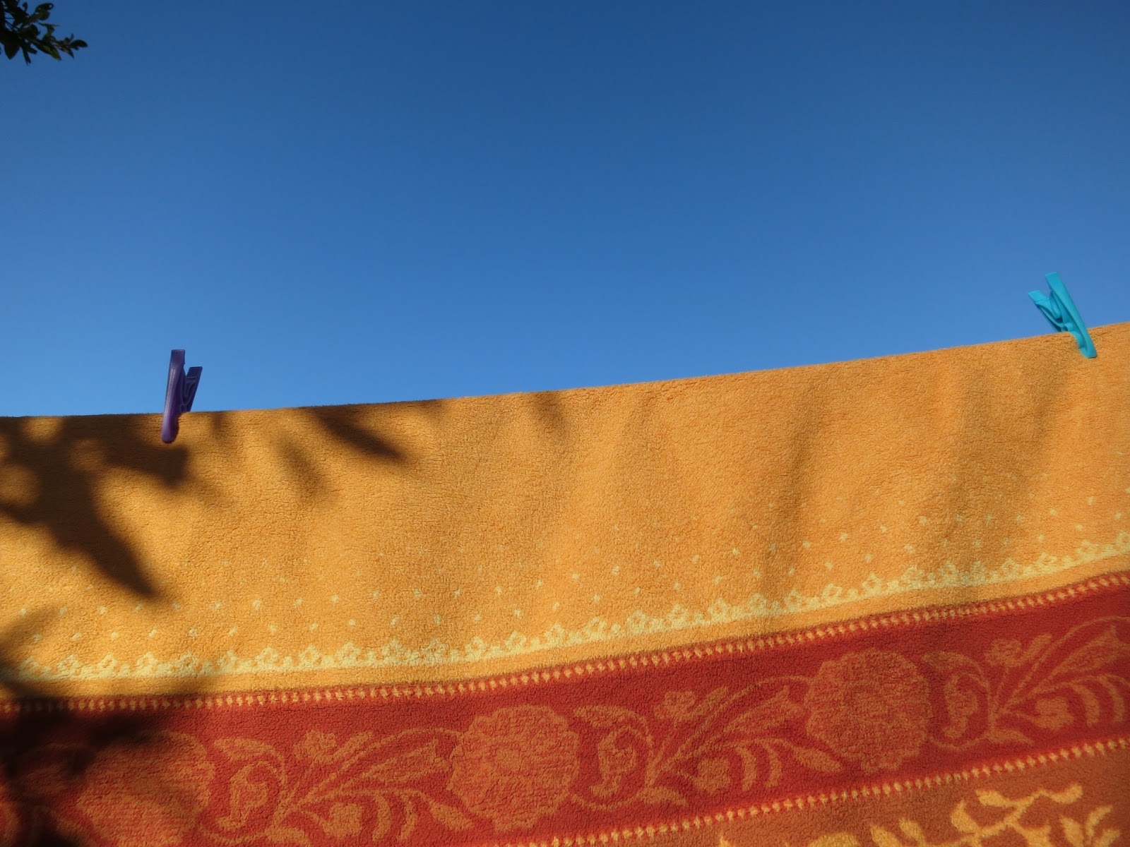 Orange and Gold blanket on line with blue and purple pegs, blue sky and a few green leaves.