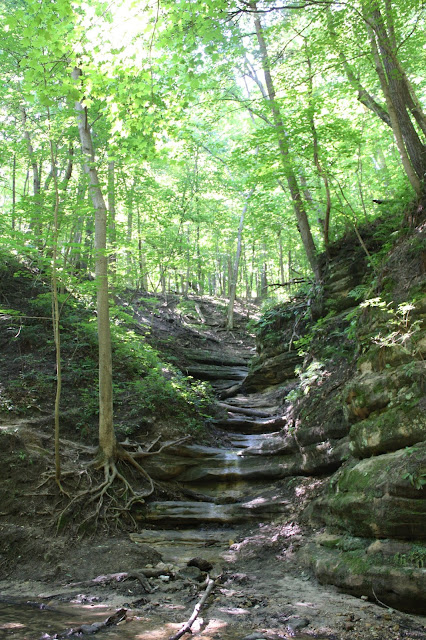 Carved out sections of Matthiessen. When there is more rain, there is probably a waterfall here.