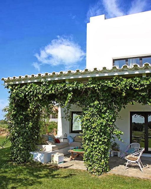 Terrasse Ombragée Les Plantes à Choisir: NOIR BLANC Un Style