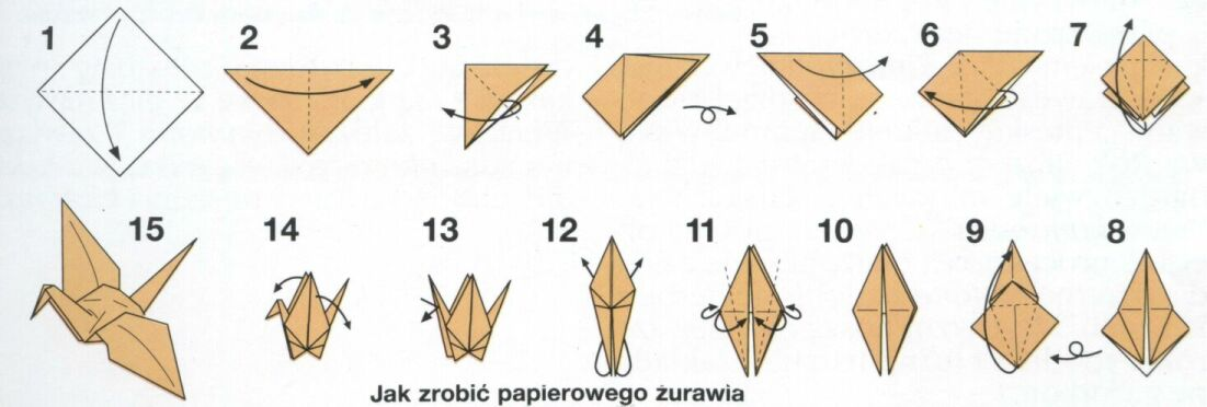 zuraw origami