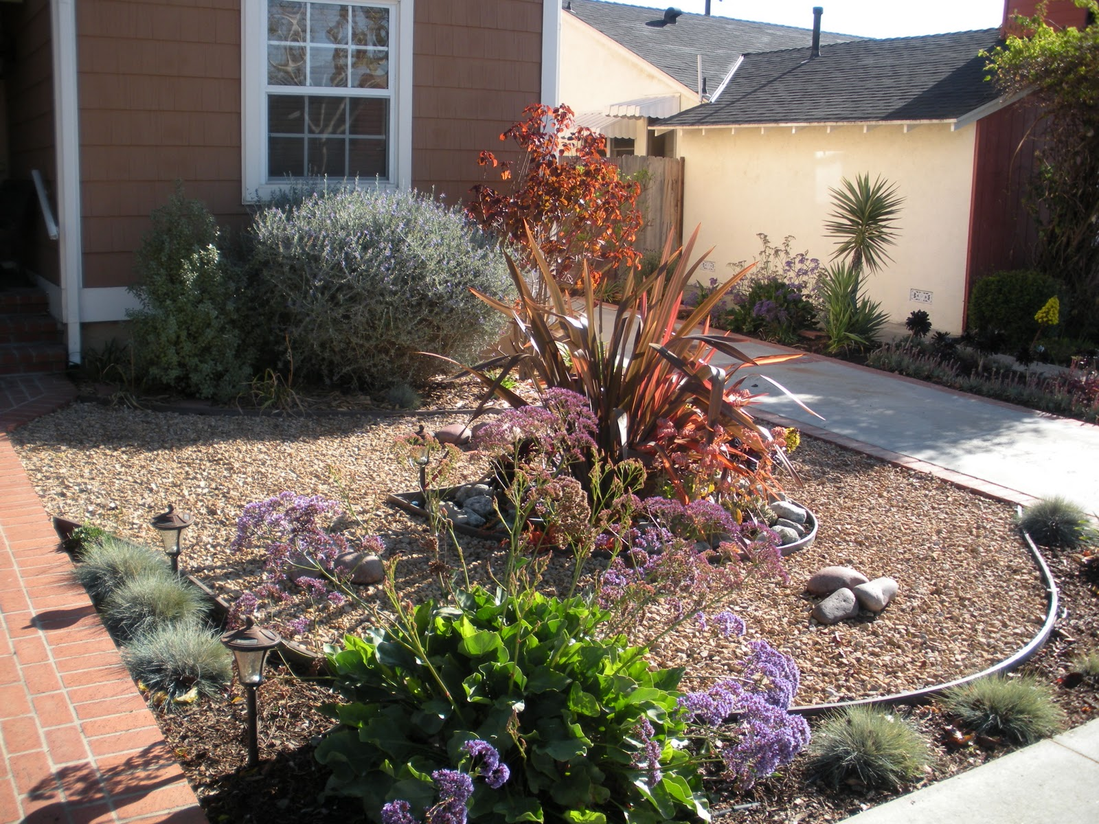 2018 mar vista green garden showcase 3622 coolidge avenue - Drought tolerant landscaping ideas ...