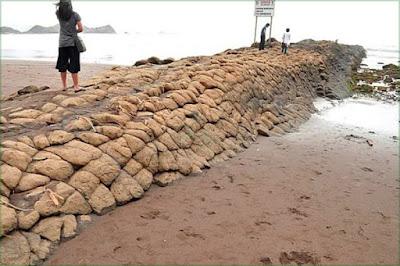 Batu Ular di Pantai Watu Ulo