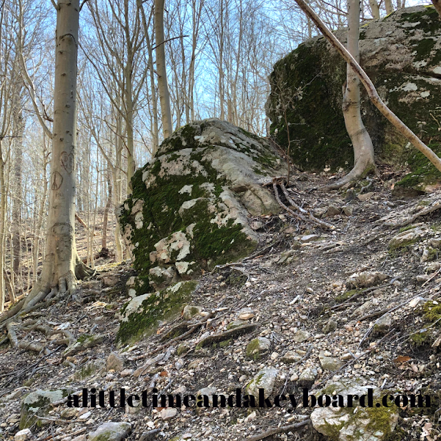 Magnificent rock landscape on the Cascade Falls Loop Trail at Patapsco Valley State Park