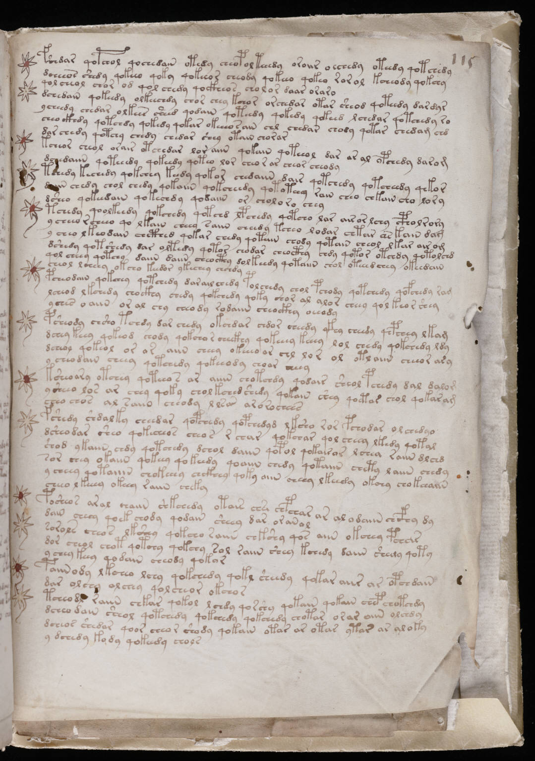 manuscrito201
