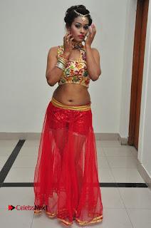 Actress Nisha Pictures at Chiranjeevi Birthday 2016 Celebrations  0036.JPG