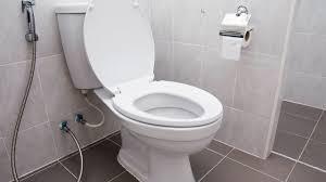 sedot wc