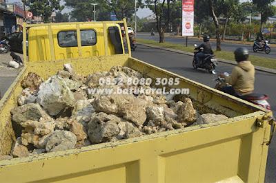 jual batu karang putih untuk resapan