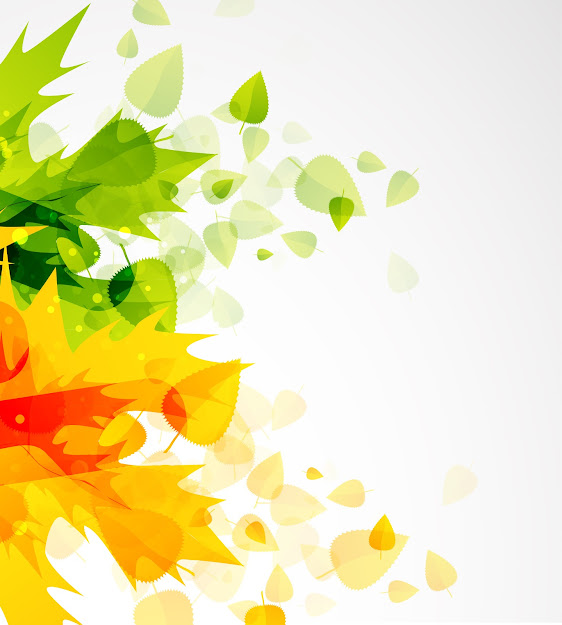 Beautiful Autumn Leaf Background  Vector