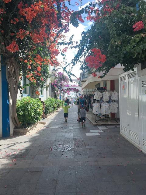 Puerto Mogán – domy porostlé rozkvetlými rostlinami