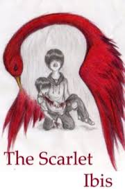 the negative pride of the narrator in scarlet ibis a short story by james hurst In the story the scarlet ibis written by james hurst, the narrator of the story changes from not accepting his physically disabled brother doodle to realizing that doodle cannot be changed the story the scarlet ibis is about a boy who lets his pride take the life of his younger brother doodle.